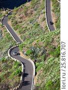 Купить «Извилистая узкая дорога TF-436. Путь из Сантьяго дель Тейде (Santiago del Teide) в деревню Маска (Masca). Тенерифе, Канарские острова, Испания», фото № 25816707, снято 8 января 2016 г. (c) Кекяляйнен Андрей / Фотобанк Лори