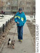 The teenage boy in a jacket walks with a little dog on the street in the winter, фото № 25826647, снято 26 марта 2017 г. (c) Землянникова Вероника / Фотобанк Лори