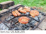 Купить «Аппетитные сочные сардельки и колбаски жарятся на самодельном гриле на пикнике», фото № 25828255, снято 21 марта 2019 г. (c) FotograFF / Фотобанк Лори