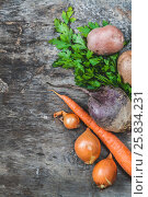 Potatoes, carrots, onions, parsley, beets raw on rustic background. Стоковое фото, фотограф Tetiana Chugunova / Фотобанк Лори
