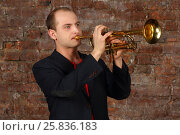 Купить «Young handsome man in suit plays trumpet in studio with brick wall», фото № 25836183, снято 9 февраля 2016 г. (c) Losevsky Pavel / Фотобанк Лори