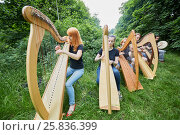 Купить «Seven young musicians play harps outdoors in park», фото № 25836399, снято 22 января 2019 г. (c) Losevsky Pavel / Фотобанк Лори