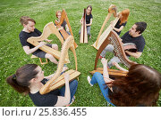 Купить «Ensemble of seven musicians play celtic harps performing outdoors at grassy lawn», фото № 25836455, снято 19 июня 2016 г. (c) Losevsky Pavel / Фотобанк Лори