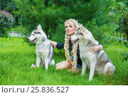 Купить «Young blond woman with two Husky dogs sits on grass under pine in summer park», фото № 25836527, снято 23 июля 2015 г. (c) Losevsky Pavel / Фотобанк Лори
