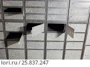 Купить «Set of numbered metal boxes with doors with two locks», фото № 25837247, снято 29 апреля 2015 г. (c) Losevsky Pavel / Фотобанк Лори
