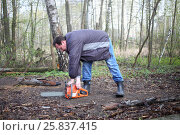 Купить «A man with glasses starts a chainsaw in the forest», фото № 25837415, снято 1 мая 2015 г. (c) Losevsky Pavel / Фотобанк Лори