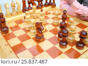 Купить «Big chessboard with black and white wood pawns before the man», фото № 25837487, снято 2 мая 2015 г. (c) Losevsky Pavel / Фотобанк Лори