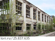 Купить «Abandoned big workshop of old factory in Samara, Russia at spring day», фото № 25837635, снято 5 мая 2015 г. (c) Losevsky Pavel / Фотобанк Лори