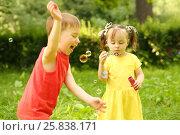 Купить «Little girl blows soap bubbles and happy little boy catches it in park», фото № 25838171, снято 24 июня 2015 г. (c) Losevsky Pavel / Фотобанк Лори