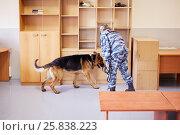 Купить «Policewoman works with shepherd in room», фото № 25838223, снято 25 июня 2015 г. (c) Losevsky Pavel / Фотобанк Лори