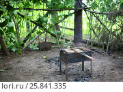 Купить «Brazier with grille and slices of bread on a cleared area in the forest», фото № 25841335, снято 17 июля 2015 г. (c) Losevsky Pavel / Фотобанк Лори