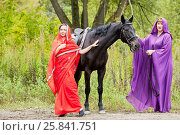 Купить «Two women in red and violet clothes with chestnut horse in park», фото № 25841751, снято 13 сентября 2015 г. (c) Losevsky Pavel / Фотобанк Лори