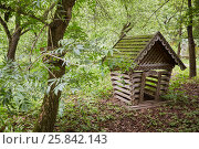 Купить «Small wooden house with mossy roof at apiary», фото № 25842143, снято 18 июня 2016 г. (c) Losevsky Pavel / Фотобанк Лори