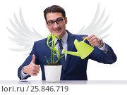 Купить «Angel investor growing future profits isolated on white», фото № 25846719, снято 20 августа 2018 г. (c) Elnur / Фотобанк Лори