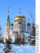 Город Омск, Успенский кафедральный собор, фото № 25852107, снято 15 января 2017 г. (c) Виктор Топорков / Фотобанк Лори
