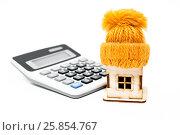 Купить «Расходы на утепление дома. Домик в шапке  калькулятор», фото № 25854767, снято 27 марта 2017 г. (c) Наталья Осипова / Фотобанк Лори
