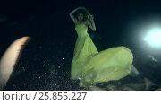 Купить «Young beautiful woman in yellow dress posing underwater with Tawny nurse sharks (Nebrius ferrugineus), night shooting, Indian Ocean, Maldives», видеоролик № 25855227, снято 27 марта 2017 г. (c) Некрасов Андрей / Фотобанк Лори