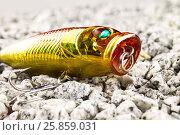 Поппер на гравийном песке. Стоковое фото, фотограф Михаил Аникаев / Фотобанк Лори