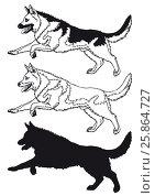 Купить «Running dog contour line on white», иллюстрация № 25864727 (c) Анастасия Некрасова / Фотобанк Лори