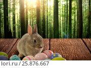 Купить «Composite image of bunny with patterned easter eggs», фото № 25876667, снято 9 декабря 2018 г. (c) Wavebreak Media / Фотобанк Лори