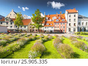 Livu square in the entertainment center of old city of Riga, Latvia. Стоковое фото, агентство BE&W Photo / Фотобанк Лори