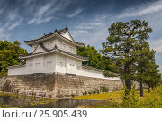 Купить «Scenery of the Nijo Castle in Kyoto, Japan», фото № 25905439, снято 17 июля 2019 г. (c) BE&W Photo / Фотобанк Лори