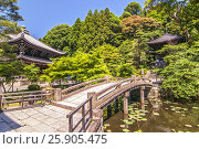 Купить «Traditional Stone bridge in the garden crossing to the Chionin Temple in Kyoto, Japan», фото № 25905475, снято 17 июля 2019 г. (c) BE&W Photo / Фотобанк Лори