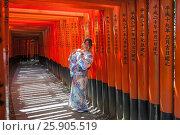 Купить «Woman dressed in traditional japanese costume walking under tori gates at the fushimi-inari shrine, Kyoto Japan», фото № 25905519, снято 23 января 2019 г. (c) BE&W Photo / Фотобанк Лори
