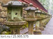 Stone lanterns on the side of Toshogu Shrine that lead the way to Futarasan Shrine in Nikko, Tochigi, Japan. Стоковое фото, агентство BE&W Photo / Фотобанк Лори