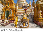 Купить «Shwedagon Paya is the most sacred golden buddhist pagoda in Yangon, Myanmar», фото № 25905935, снято 26 марта 2019 г. (c) BE&W Photo / Фотобанк Лори