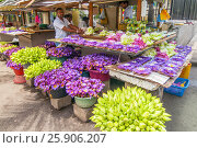 Купить «Flowers sold to be used as offerings in front of the Temple of the Tooth Relic in Kandy, Sri Lanka», фото № 25906207, снято 19 апреля 2019 г. (c) BE&W Photo / Фотобанк Лори