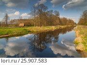 Купить «Lasica Channel, swamp in Kampinoski National Park near Warsaw, Poland», фото № 25907583, снято 11 июля 2020 г. (c) BE&W Photo / Фотобанк Лори
