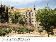Купить «Церковь святого Стефана (Иерусалим)», эксклюзивное фото № 25923827, снято 16 мая 2014 г. (c) Александр Гаценко / Фотобанк Лори