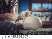 Купить «Working master», фото № 25936307, снято 8 декабря 2016 г. (c) Raev Denis / Фотобанк Лори