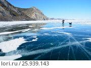 Купить «Озеро Байкал, турист на коньках едет по льду с собакой в ясный день», фото № 25939143, снято 23 августа 2019 г. (c) Овчинникова Ирина / Фотобанк Лори