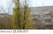 Купить «Rain drops on the glass», видеоролик № 25939871, снято 4 апреля 2017 г. (c) Денис Дряшкин / Фотобанк Лори
