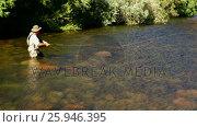 Купить «Man fly fishing in river», видеоролик № 25946395, снято 18 июля 2019 г. (c) Wavebreak Media / Фотобанк Лори