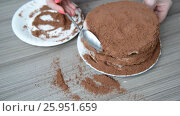 Купить «Woman covers cake with biscuit crumbs», видеоролик № 25951659, снято 19 марта 2017 г. (c) Володина Ольга / Фотобанк Лори