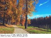 Купить «Осенний пейзаж», фото № 25953215, снято 2 октября 2016 г. (c) Валерий Боярский / Фотобанк Лори