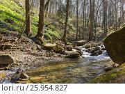 Купить «Горная река течет по ущелью. Смешанные леса кавказских гор. Весна», фото № 25954827, снято 2 апреля 2017 г. (c) Наталья Гармашева / Фотобанк Лори