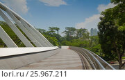 Купить «Walking bridge between parks in Singapore motion timelapse», видеоролик № 25967211, снято 21 июля 2018 г. (c) Кирилл Трифонов / Фотобанк Лори