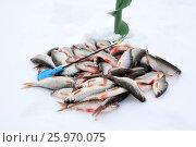 Купить «Зимняя ловля плотвы», фото № 25970075, снято 25 июня 2019 г. (c) Юрий Фатеев / Фотобанк Лори