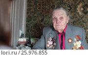 Купить «Ветеран Второй Мировой войны, отвечает на вопросы журналиста», эксклюзивный видеоролик № 25976855, снято 13 апреля 2017 г. (c) Дмитрий Неумоин / Фотобанк Лори