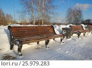 Купить «Скамейки в зимнем парке», эксклюзивное фото № 25979283, снято 25 января 2017 г. (c) Елена Коромыслова / Фотобанк Лори