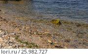 Купить «Sea water in the surf area a sunny day on the Black Sea», видеоролик № 25982727, снято 13 апреля 2017 г. (c) Некрасов Андрей / Фотобанк Лори