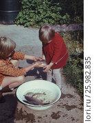 Советские старые фото. 1978 год, Подмосковье, Москва. Счастливое детство. Дети смотрят рыбу, которая плавает в тазу. Редакционное фото, фотограф Наталия Преображенская / Фотобанк Лори