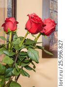 Три красные розы. Стоковое фото, фотограф Елена Корепанова / Фотобанк Лори
