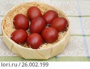 Купить «Пасхальные яйца, окрашенные отваром луковой шелухи», эксклюзивное фото № 26002199, снято 16 апреля 2017 г. (c) Dmitry29 / Фотобанк Лори