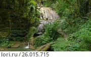Waterfall in summer forest of Caucasus Mountains. Стоковое видео, видеограф Михаил Коханчиков / Фотобанк Лори