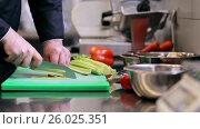Купить «hands of male chef cook chopping celery in kitchen», видеоролик № 26025351, снято 19 июля 2019 г. (c) Syda Productions / Фотобанк Лори